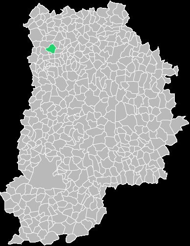 Destruction guepes et frelons à Annet-sur-Marne (seine-et-marne-77)