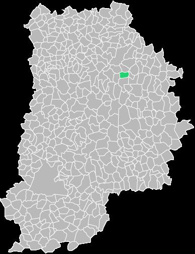 Destruction guepes et frelons à Boissy-le-Châtel (seine-et-marne-77)