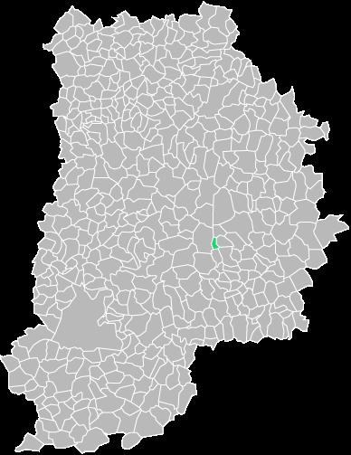 Destruction guepes et frelons à Châteaubleau (seine-et-marne-77)