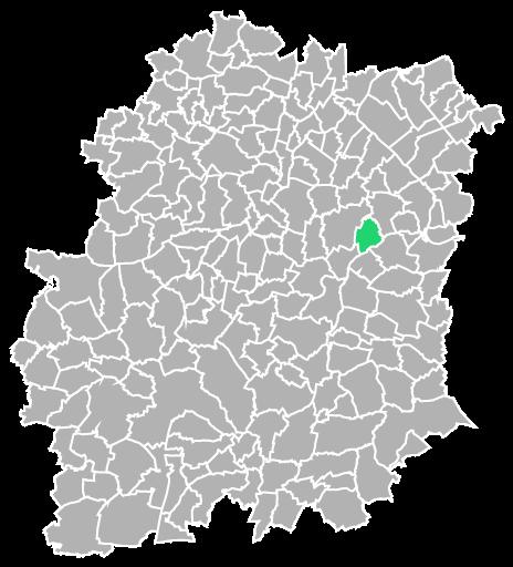 Destruction guepes et frelons à Écharcon (Essonne-91)