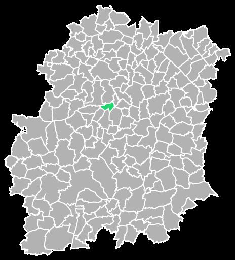 Destruction guepes et frelons à Égly (Essonne-91)