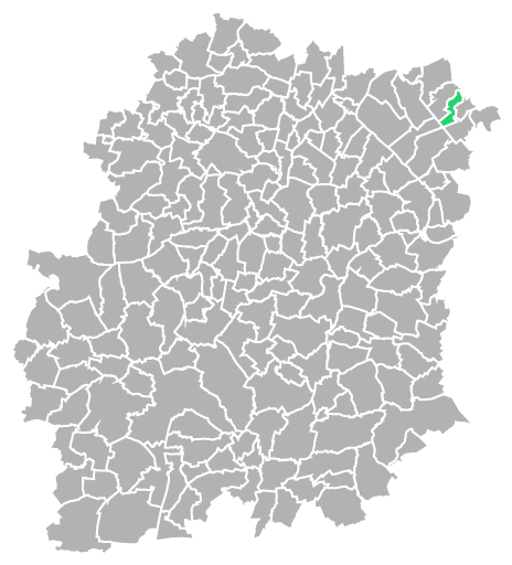 Destruction guepes et frelons à Épinay-sous-Sénart (Essonne-91)