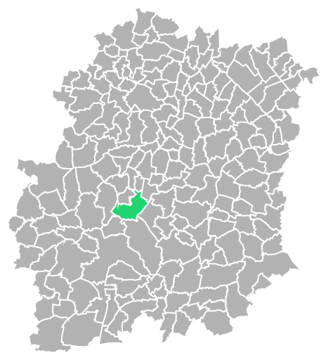 Destruction guepes et frelons à Étréchy (Essonne-91)