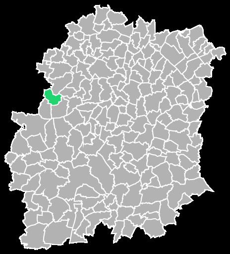 Destruction guepes et frelons à Angervilliers (Essonne-91)
