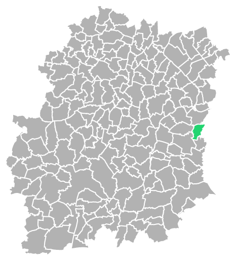 Destruction guepes et frelons à Auvernaux (Essonne-91)