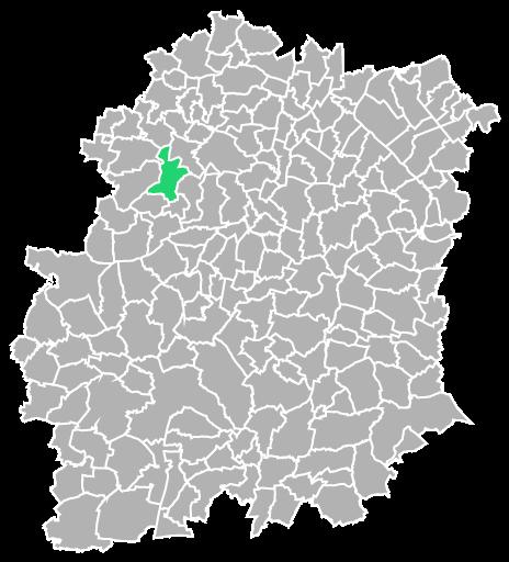 Destruction guepes et frelons à Briis-sous-Forges (Essonne-91)