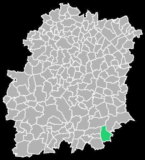 Destruction guepes et frelons à Buno-Bonnevaux (Essonne-91)