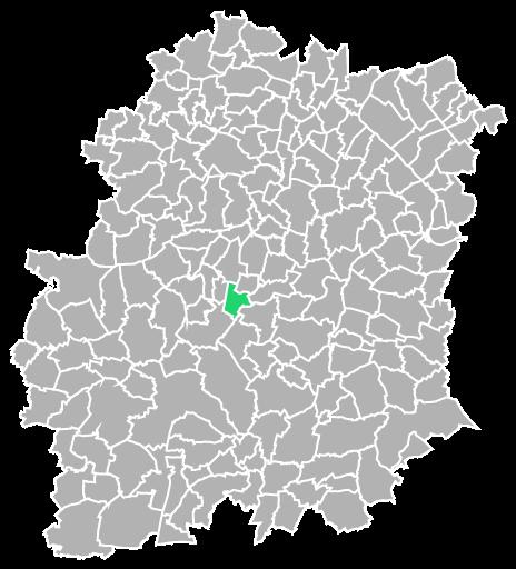 Destruction guepes et frelons à Chamarande (Essonne-91)