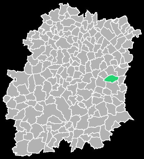 Destruction guepes et frelons à Chevannes (Essonne-91)