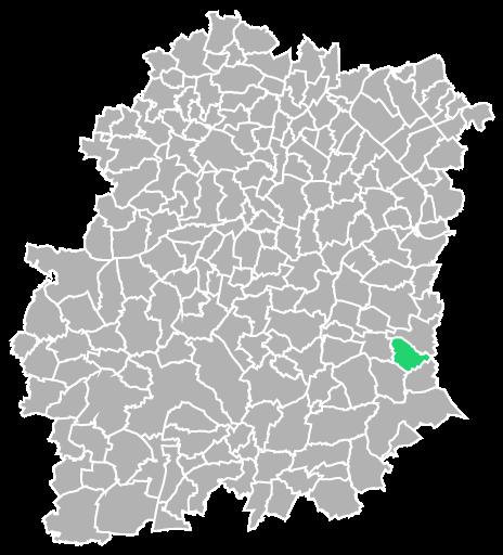 Destruction guepes et frelons à Dannemois (Essonne-91)