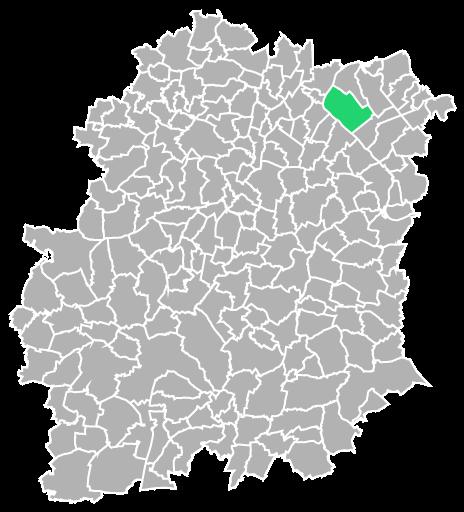 Destruction guepes et frelons à Draveil (Essonne-91)