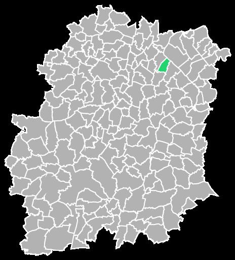 Destruction guepes et frelons à Grigny (Essonne-91)