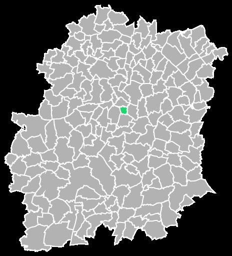 Destruction guepes et frelons à Guibeville (Essonne-91)