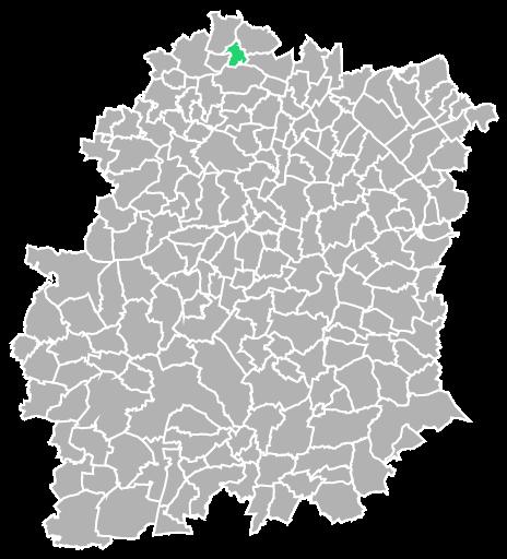 Destruction guepes et frelons à Igny (Essonne-91)
