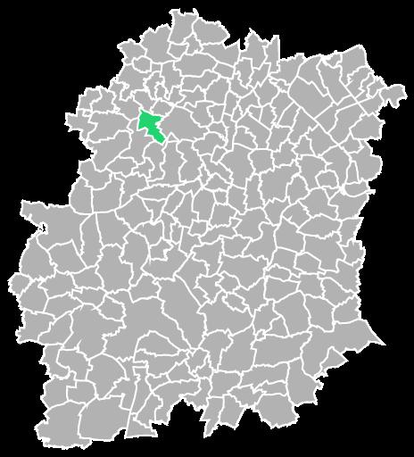Destruction guepes et frelons à Janvry (Essonne-91)