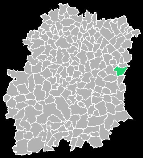 Destruction guepes et frelons à Le-Coudray-Montceaux (Essonne-91)