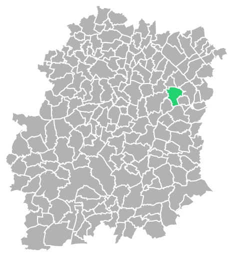 Destruction guepes et frelons à Lisses (Essonne-91)