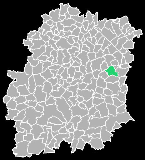 Destruction guepes et frelons à Mennecy (Essonne-91)