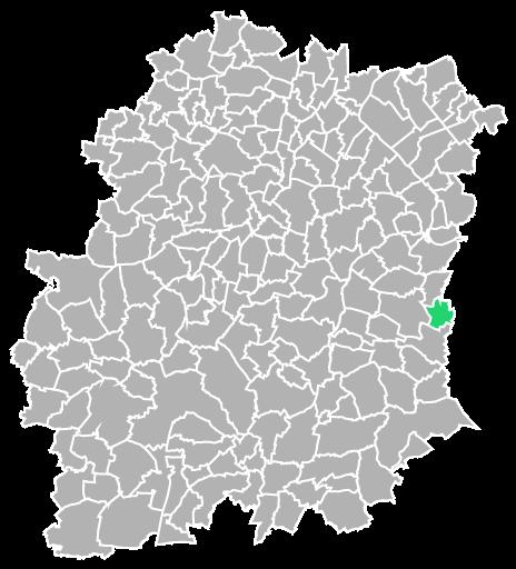 Destruction guepes et frelons à Nainville-les-Roches (Essonne-91)