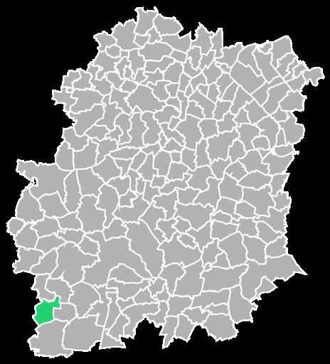 Destruction guepes et frelons à Pussay (Essonne-91)
