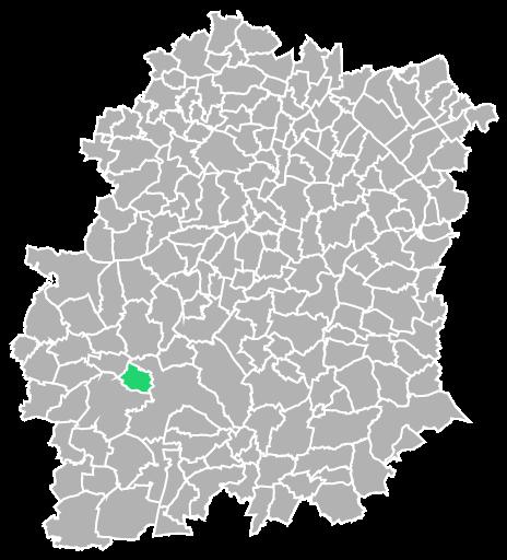 Destruction guepes et frelons à Saint-Hilaire (Essonne-91)