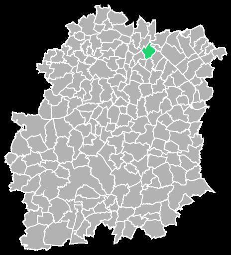 Destruction guepes et frelons à Savigny-sur-Orge (Essonne-91)
