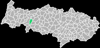 Destruction guepes et frelons à Théméricourt (Val-d'oise-95)