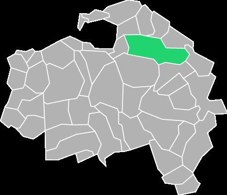 Destruction guepes et frelons à Champigny-sur-Marne (Val-de-Marne-94)
