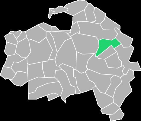 Destruction guepes et frelons à Chennevières-sur-Marne (Val-de-Marne-94)