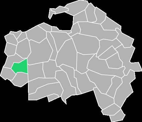Destruction guepes et frelons à Chevilly-Larue (Val-de-Marne-94)