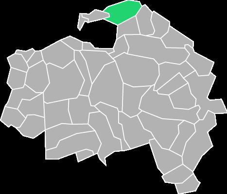 Destruction guepes et frelons à Fontenay-sous-Bois (Val-de-Marne-94)