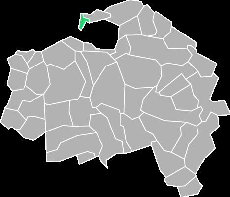Destruction guepes et frelons à Saint-Mandé (Val-de-Marne-94)