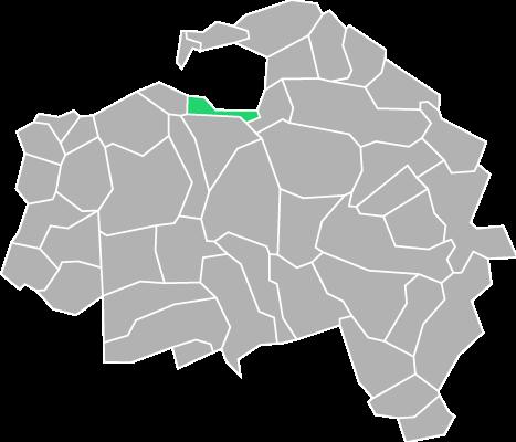 Destruction guepes et frelons à Saint-Maurice (Val-de-Marne-94)