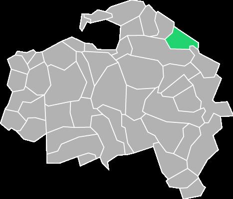 Destruction guepes et frelons à Villiers-sur-Marne (Val-de-Marne-94)